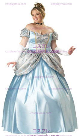Enchanting Princess Costume Plus Size