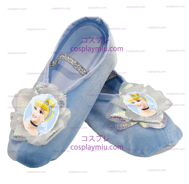Cinderella Slippers